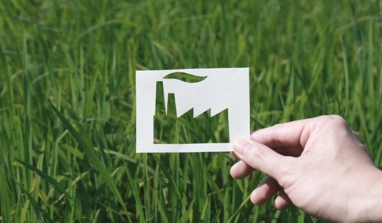 Comment différencier la RSE d'une entreprise du greenwashing?